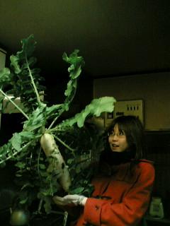 image/guerrillabba-2005-11-24T21:54:20-1.JPG